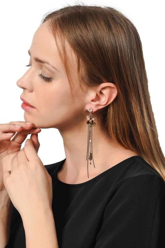 Earrings With Stones Swinging (Brown)